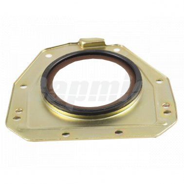 Crankshaft Seal Ring